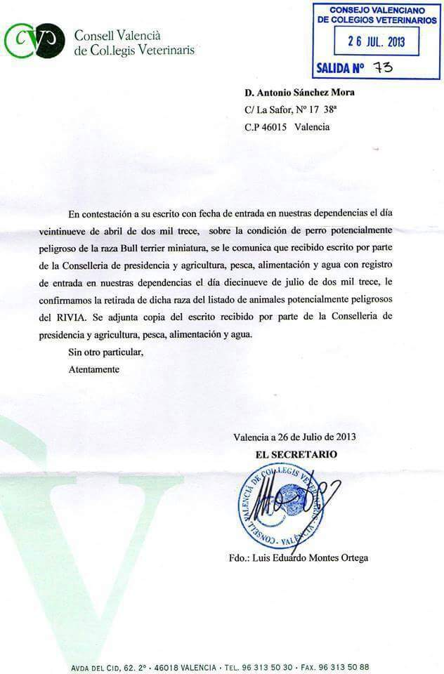 Licencia Bull Terrier Miniatura Colegio valenciano